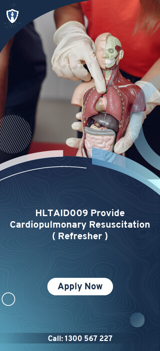 HLTAID009 Provide Cardiopulmonary Resuscitation Refresher Online Course in Melbourne, Australia - Oscar Academy Provide First Aid course in AU